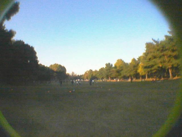 魚眼な野川公園